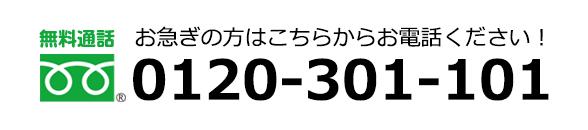 0120-301-101